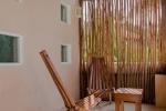 Suite Maracuya 2