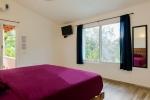 Suite Maracuya 5